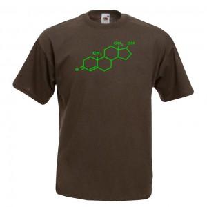 Molecula Testosterona