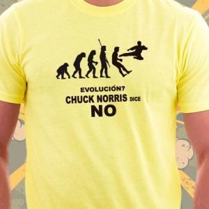 Chuck Norris dice No